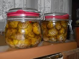 cuisiner des coulemelles conserves de coulemelles au vinaigre gites les vaquans gites
