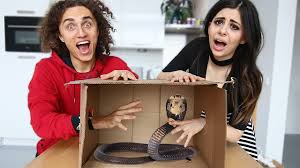 Challenge Kwebbelkop What S In The Box Challenge Live Animal