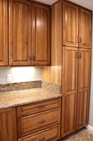 interior solutions kitchens advantage by bridgewood hickory fruit wood finish 4 in back