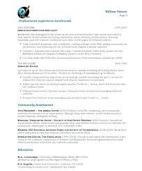 resume objective for freelance writer writer resume page service writer resume objective reflection