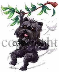 affenpinscher swimming caricature dogs