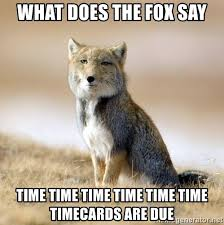 What Did The Fox Say Meme - what does the fox say time time time time time time timecards are