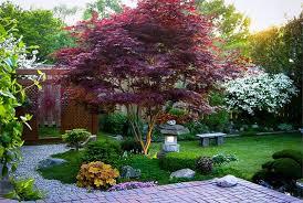 albero giardino alberi da giardino consigli e suggerimenti per aiutarvi nella scelta