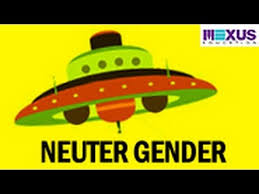 neuter gender youtube