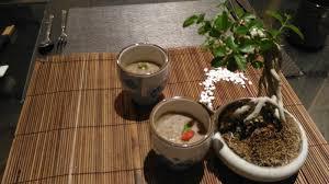 d騅idoir cuisine 台語與佛典 細說台語 台語正字 青箬笠 粽箬子