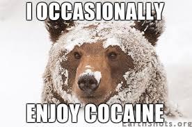 Cat Cocaine Meme - best 27 cocaine cat meme wallpaper site wallpaper site