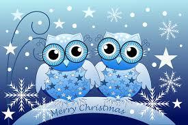 cute blue owls merry christmas text card