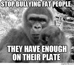 Funny Fat People Meme - bullying fat people meme