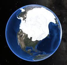 ice age survival u2013 threading the genetic and behavioral bottleneck