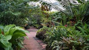 Melb Botanical Gardens by Melbourne Fresh Daily Glasshouse Botanic Gardens