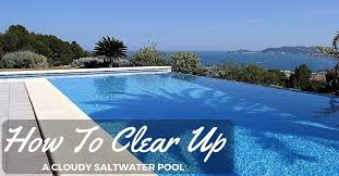 how to clear up a cloudy saltwater pool the rex garden