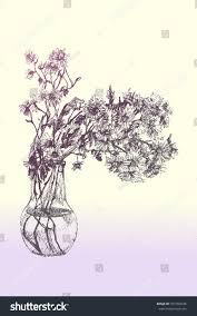 Pencil Sketch Of Flower Vase Vase Chrysanthemums Pencil Drawing Stock Vector 377709934