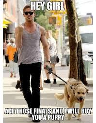 Ryan Gosling Finals Meme - 20 ryan gosling memes that every fan will love sayingimages com