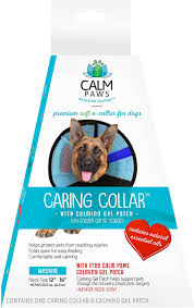 calming collar calm paws recovery caring dog collar medium chewy com