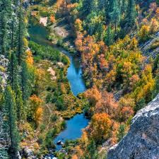 Arizona rivers images Blue and san francisco rivers iba arizona important bird areas jpg