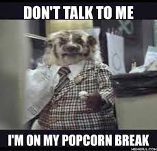 Badger Memes - car sales memes on twitter badger carsales popcornbreak