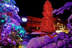 Professional Christmas Lights Professional Christmas Light Installation Utah Brite Nites