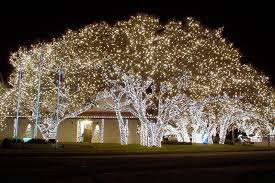 johnson city christmas lights today s action photo is a picture of a very impressive christmas