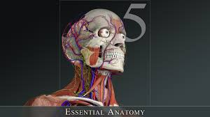 Anatomy And Physiology Apps Anatomy App Android Images Learn Human Anatomy Image