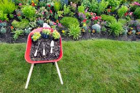 Spring Landscaping | spring into landscaping virginia virginia green lawn care company