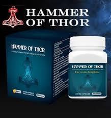 ammer of thor adalah suplement yang digunakan sebagai obat kuat