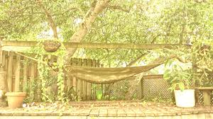 Hammock Backyard Hammock On Backyard Deck U2013 Visions By Janet
