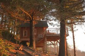 Treehouse Examples Fall Is In The Air Bnb At These Stunning Treehouses Airbnb Press Room