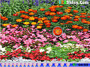 flower games game37 net