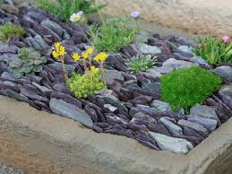 succulent filled slate trough hgtv