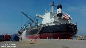 vessel details for xing xi hai bulk carrier imo 9767065 mmsi