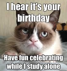 Grumpy Cat Birthday Memes - grumpy cat meme meme grumpy cat me me birthday funny meem