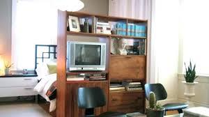 Plush Design Ideas Studio Room Dividers Best Interior
