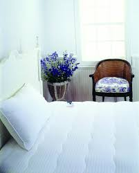 Bed Bath And Beyond Mattress Protector Mattresses Mattress Protector Bed Bath And Beyond Mattressess