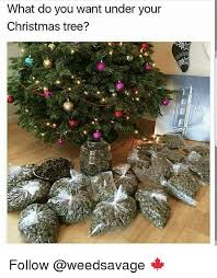 Christmas Tree Meme - what do you want under your christmas tree follow christmas