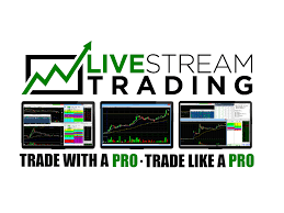 livestream trading day trading screen share and chat room