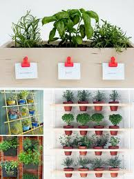 roundup 10 more small space herb garden ideas curbly