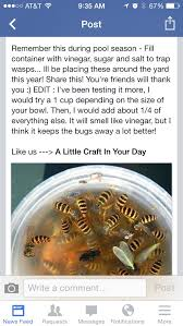 How To Keep Pests Away From Garden - 25 unique keep bees away ideas on pinterest natural bee