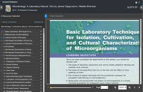 pearson collections study tools for students