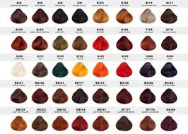 hair color chart manufacture multi color hair color chart hair dye color chart swatch