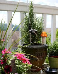 5 urban garden tips for rentals u0026 small spaces numi tea garden blog