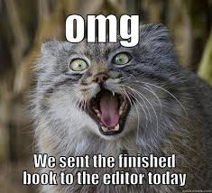 Writing Meme - despair is that moment when you re done writing your book