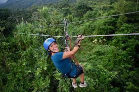 Treetop Canopy Tours by Ecoglide Arenal Park Canopy Tour In La Fortuna Diy Travel Hq