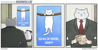 Hang In There Meme - business cat d hang in there meme by automatic m4 memedroid