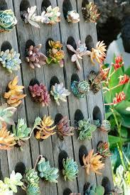 Vertical Garden Ideas The 50 Best Vertical Garden Ideas And Designs For 2017