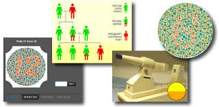 Red Green Color Blind Simulator Colblindor All About Color Blindness Acoe Learns Pinterest