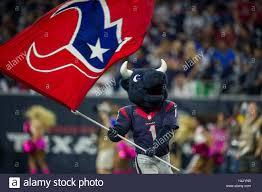 Houston Texans Flags Houston Texas Usa 16th Oct 2016 Houston Texans Mascot Toro