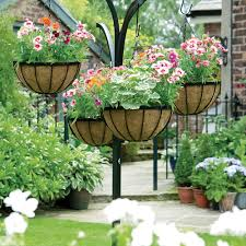 hanging flower baskets the only guide you u0027ll need