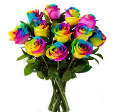 Wholesale Roses Buy Wholesale Roses Online In Bulk For Wedding Long Stem Roses