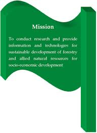objectives of mission statement vision mission core values mandate key strategic objectives