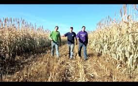 farmer style gangnam style parody youtube